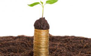 Bei ökologischen Geldanlagen investiert der Anleger mit gutem Gewissen und wird durch hohe Renditen belohnt. Foto: djd/UDI/ACN